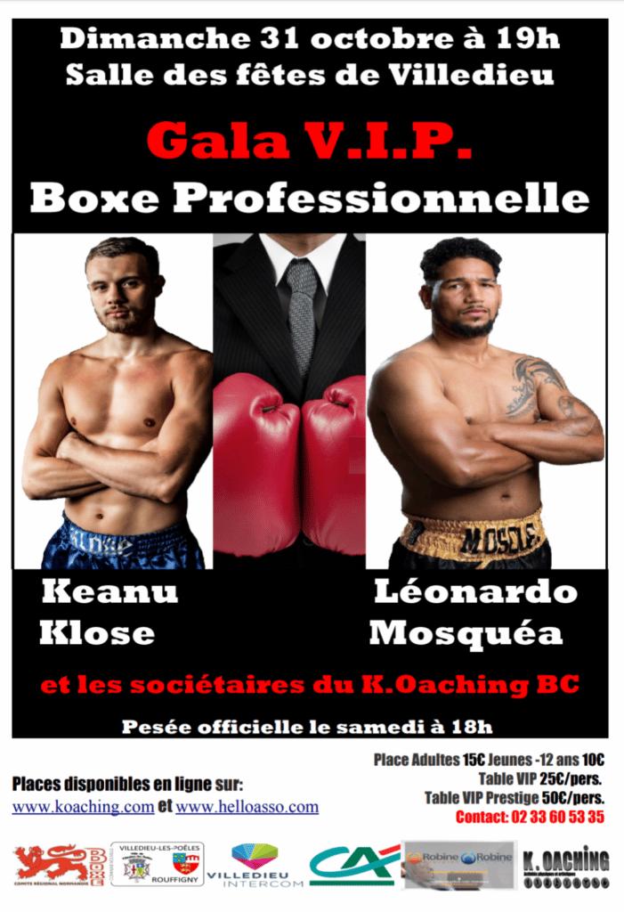 gala boxe professionnelle